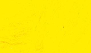 Amarillo Hansa